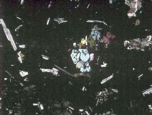 斑状組織(玄武岩)、偏光顕微鏡(下方ポーラー)で撮影 国立科学博物館岩... 鉱物